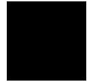 סופרייז-מפיצי ריח יוקרתי מארצות הברית אייקון מותג